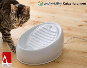 Katze hechelt: Trinkbrunnen