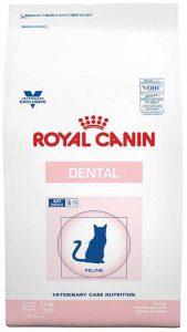 Royal Canin gegen Mundgeruch
