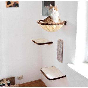 Katze Kletterwand