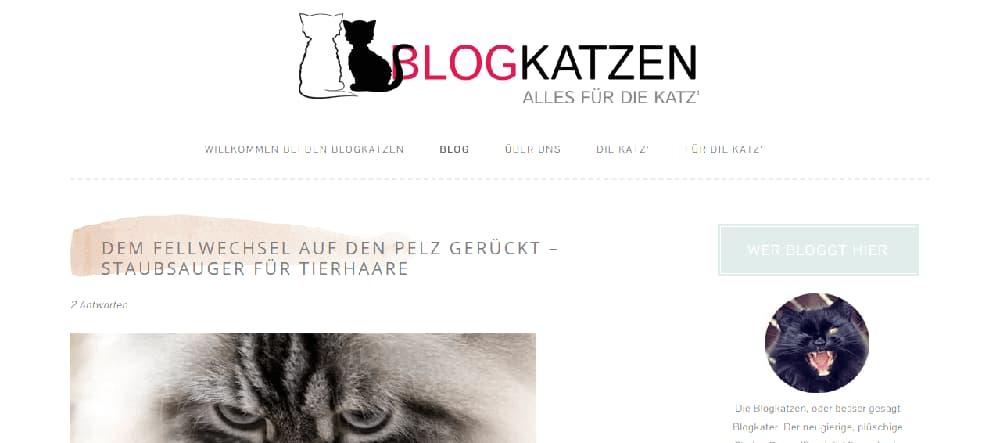 Blogkatzen Katzenblog