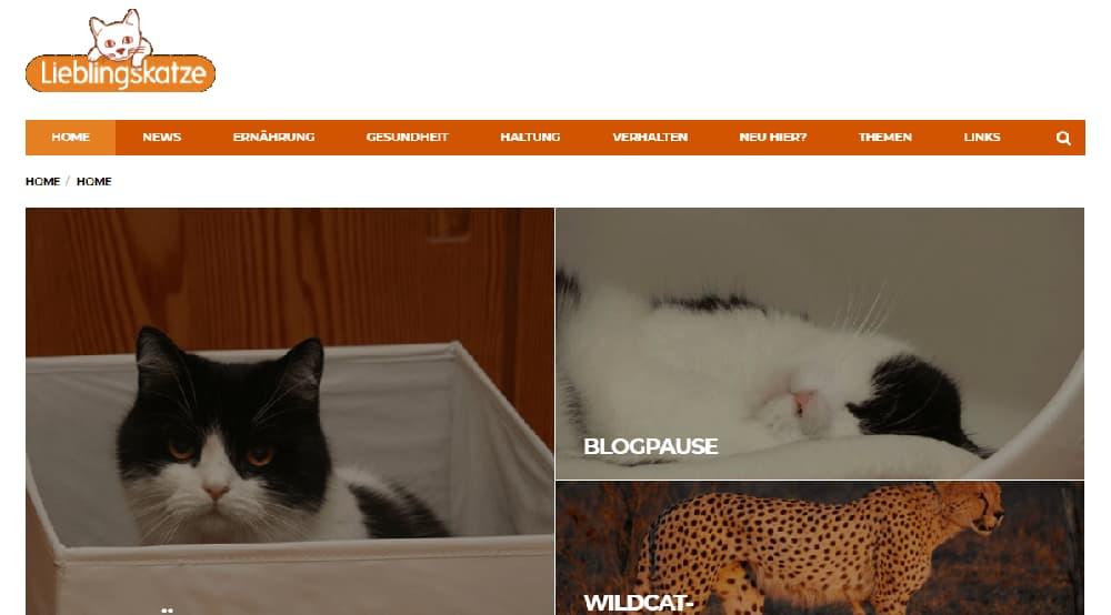 Lieblingskatze Katzenblog