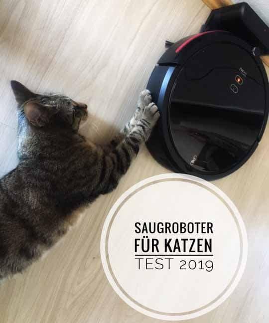 Saugroboter für Katzen