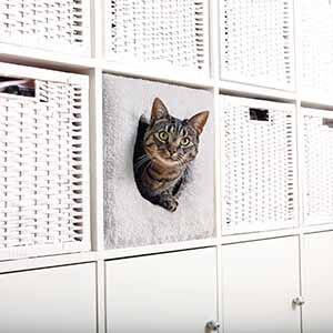 Katzenhöhle Geschenk