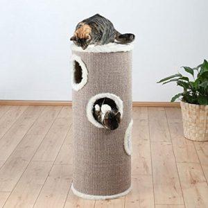 kratztonne große katzen