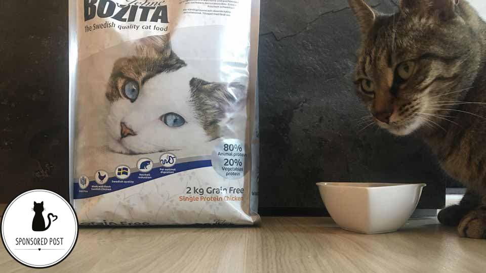Bozita Katzenfutter Test