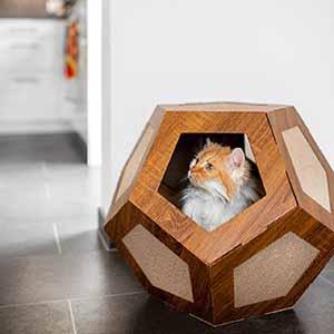 designer kratzwürfel Katzen