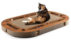 playplate canadiancat company