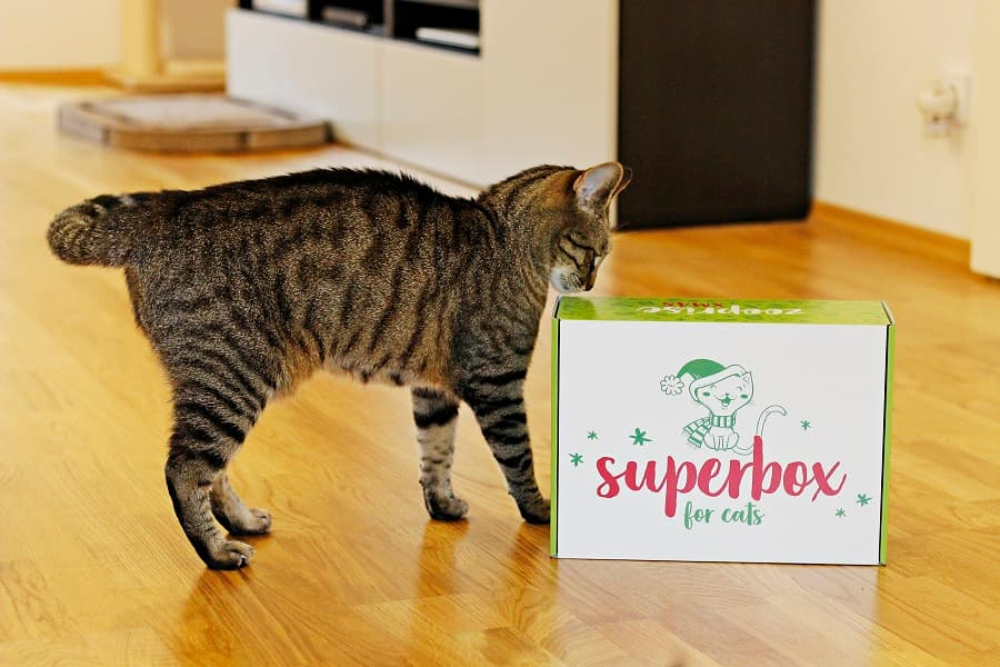 zooplus superbox erfahrungen