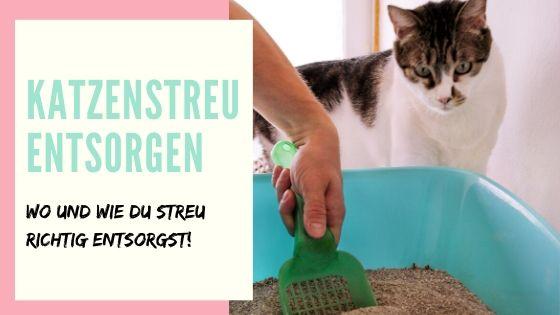 Katzenstreu entsorgen
