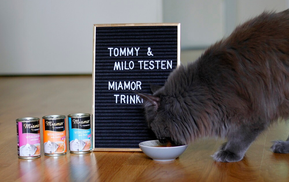 Miamor Trinkfein test