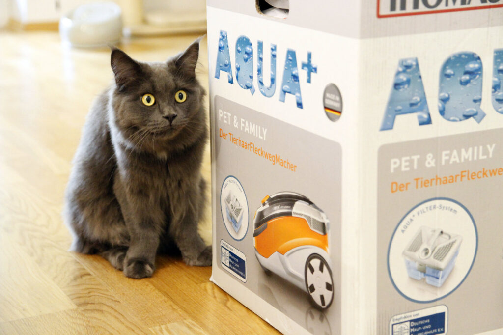 Thomas Aqua+ Pet & Family Staubsauger test