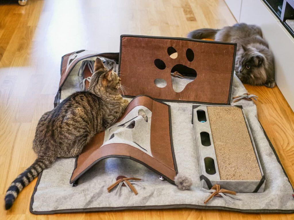 spielteppich katzen